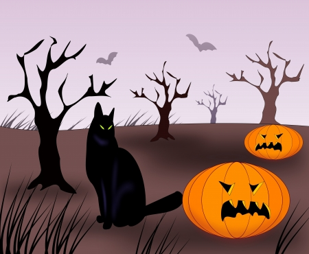 gloomy: A black cat and two pumpkins in a gloomy landscape at dusk.
