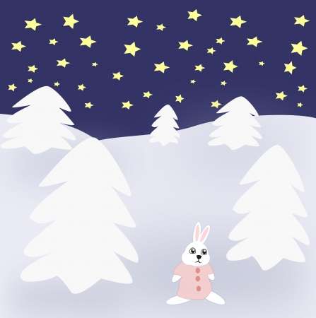 A rabbit that stand between snow covered spruce trees. photo