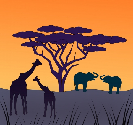 Two giraffes and two elephants under a large tree  photo