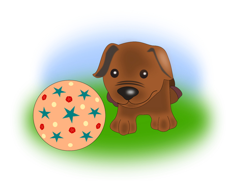 bemused:  A funny little puppy looking at a colorful ball