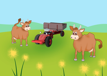 Two cows and a red tractor on a meadow with yellow flowers  photo