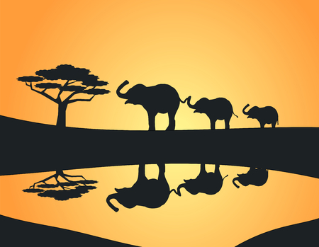 Three elephants lined up at a watering hole