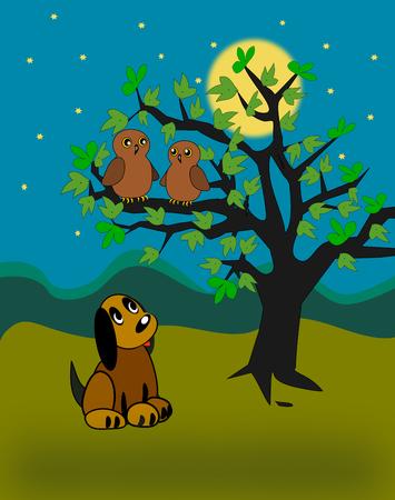 moonshine: A  little dog sitting and looking at two owls in a tree.