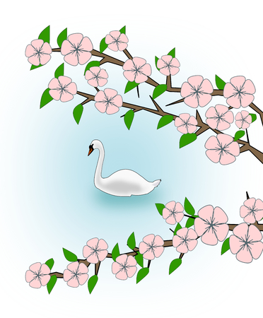 swan lake: Flowering branches and a swan swimming in a lake.