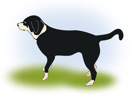 affection: Illustration of a black and dog standing in the grass. Stock Photo