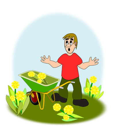 A young boy, with a wheelbarrow, between big yellow flowers.