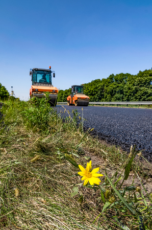 Yellow flower on the background of building a road and road rollers. Asphalt paving.