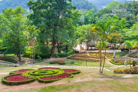 Magnificent tropical park with palm trees and flowers in Dalat Vietnam