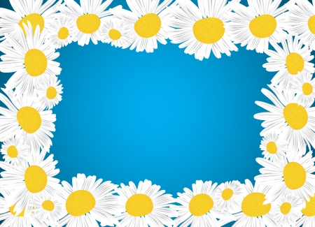 Camomile Floral Frame  Clip-art Vector