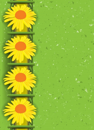 camomile tea: Abstract floral background  illustration  Clip-art