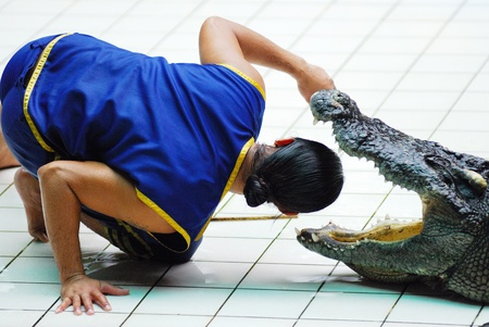 A man fight with the crocodile