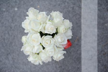 ribbin: white rose bouguet in grey background