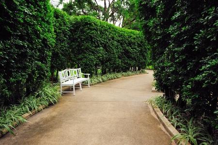 garden bench: relax chair in the garden