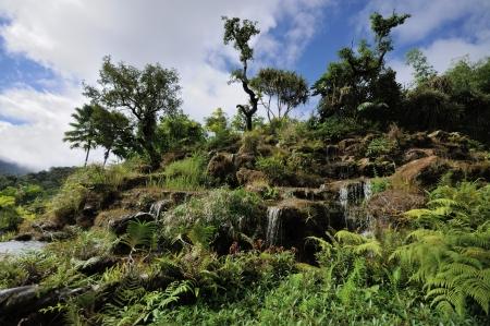 ourdoor: waterfall scene ourdoor