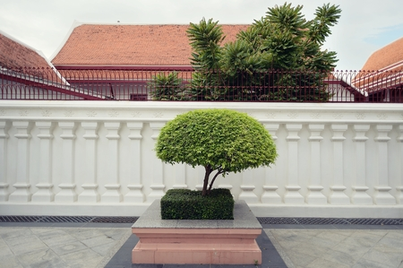 Temple environment tree Stock Photo