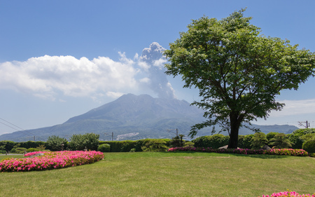 Active Vulcan Sakurajima covered by green Landscape. Taken from the wonderful Sengan-en Garden. Located in Kagoshima, Kyushu, South of Japan. Reklamní fotografie