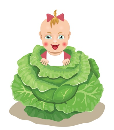 the newborn girl being in cabbage