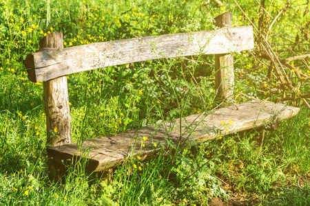 Old bench, overgrown with grass, wooden bench, abandoned property 写真素材