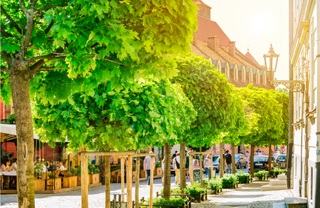 The sun illuminates the green trees with light, the architecture of the city, the streets of Wroclaw, Poland Editorial