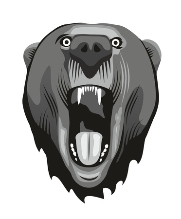 Head of a aggressive bear with opened moutn Vector