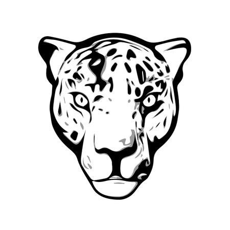 jaguar: Jaguar head illustration isolated on white background Illustration