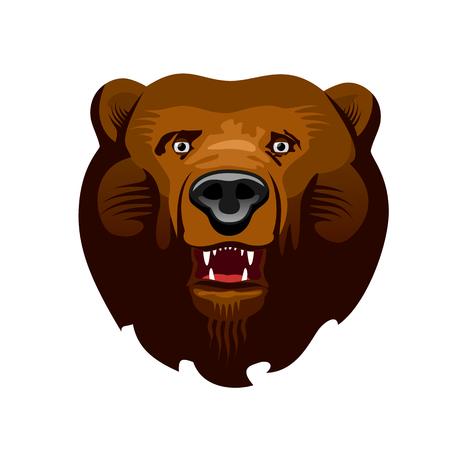 actors: Head of Kodiak bear, Ursus Actors, vector illustration Illustration