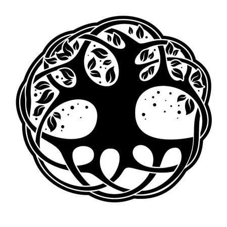 arbol de la vida: �rbol celta de la vida aislada en el fondo blanco