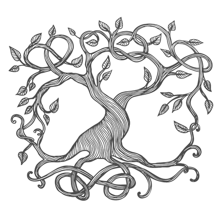 single tree: Celtic tree of life, illustration of Yggdrasil
