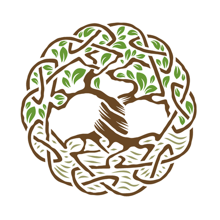 Illustration of celtic tree of life,  color version, vector illustration