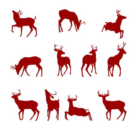 venado: Varias siluetas de ciervos aislados sobre fondo blanco