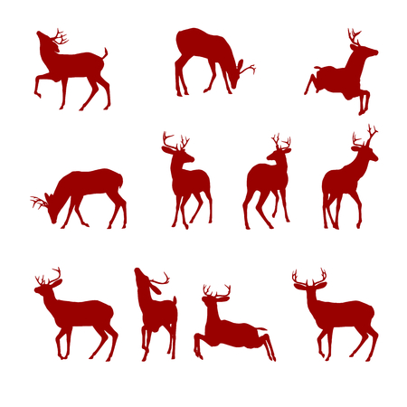 deer antlers: Various silhouettes of deer isolated on white background