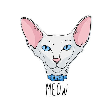 portrait of oriental cat. White cat with blue eyes. Illustration