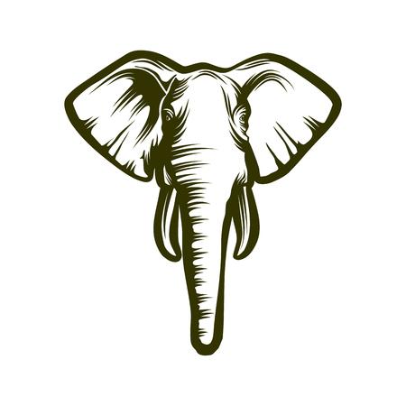 Head of African elephant. Illustration