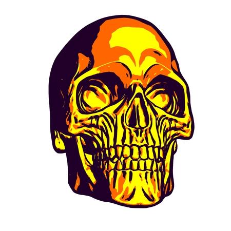 Human gold skull, uniform colors, vector illustration Ilustração