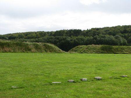 vikings: Vikings place