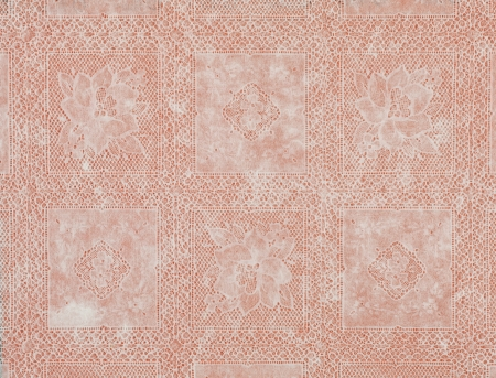 White lace floral pattern old fashioned salmon Stock Photo - 16806375