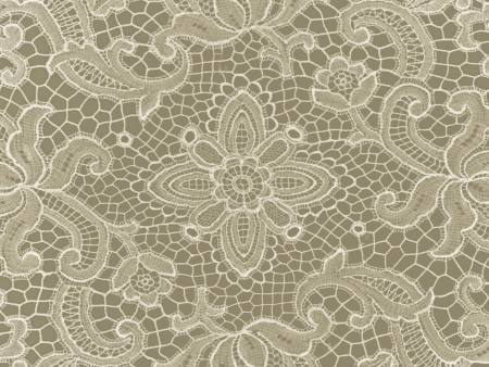 lace pattern: background broken lace pattern with flowers on white
