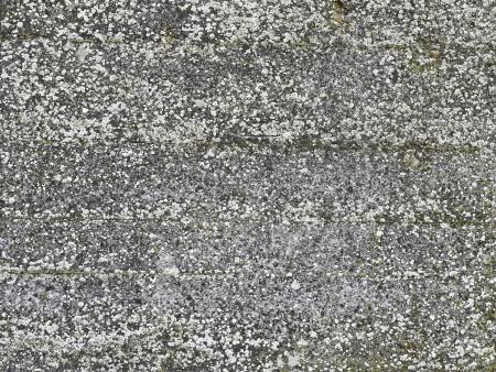 hintergrund, alt, verwittert, beton Stock Photo - 18009629