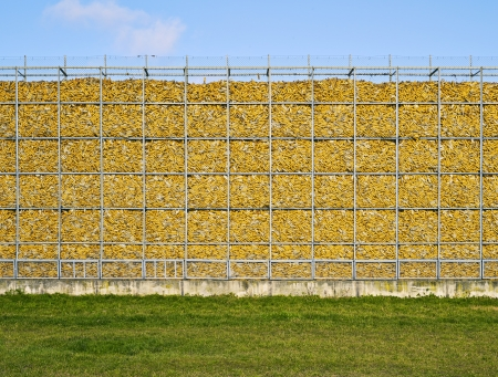 corn, wall, yellow, natural, memory Stock Photo - 18141626
