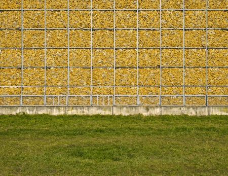 corn, wall, yellow, natural, memory Stock Photo - 18141625