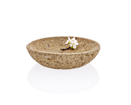 Bowl of stone and blossom apple photo