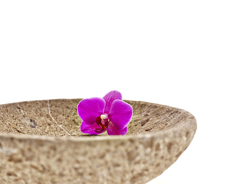 Bowl with flower orchid exempted photo