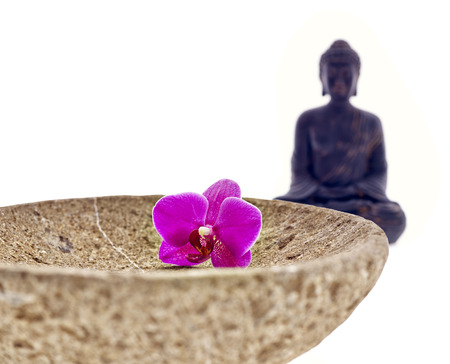 Buddha with bowl flower of an orchid photo