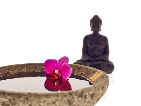 Buddha with bowl water and pink blossom photo