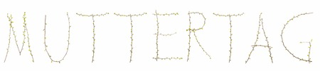 platelets: typography and type Mothers Day branches with platelets