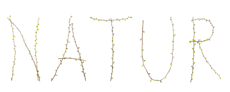 platelets: typography and type nature branches with platelets Stock Photo