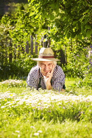 daisys: Gardener lying with a hat in a flower meadow of daisys in a garden Stock Photo