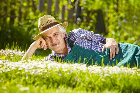 daisys: Gardener lying in a flower meadow of daisys rebelled laterally