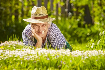 lean on hands: Gardener lying in a flower meadow of daisys and is very happy Stock Photo