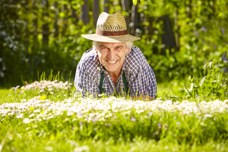 daisys: Gardener lying in a flower meadow of daisys on the ground Stock Photo